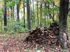#BePrepared for Winter. #mountainlife #beoutdoors #cherrylogmountain #firewood