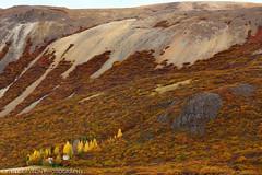Stunning Icelandic landscape
