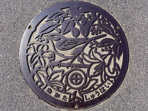 Nukata Aichi, manhole cover (愛知県額田町のマンホール)