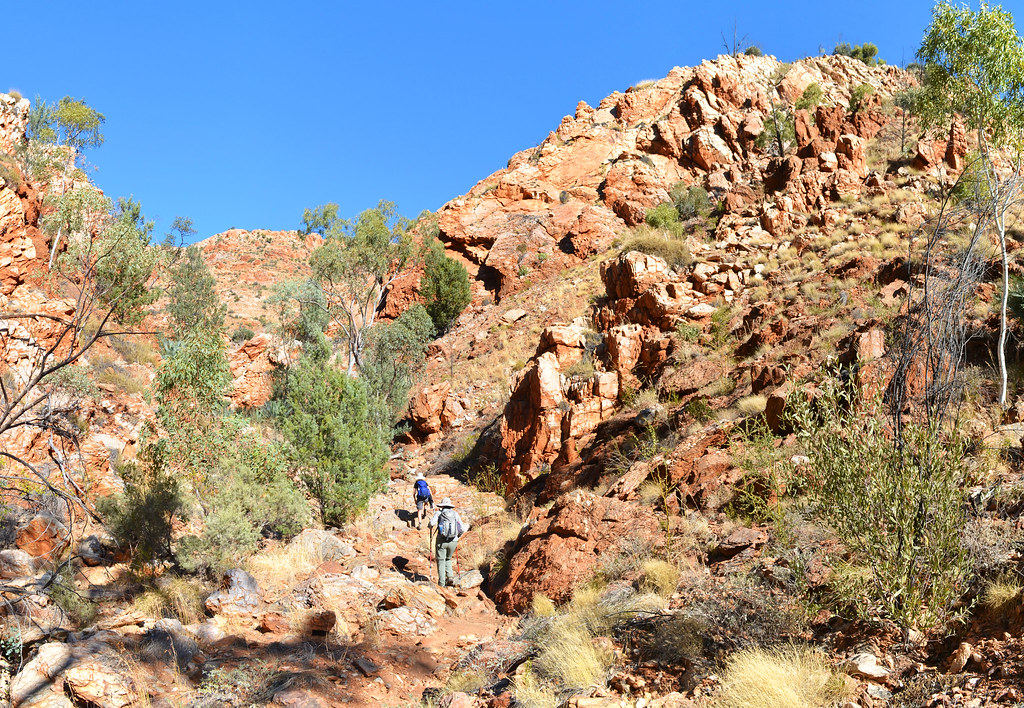 One of many gorges - Larapinta Trail