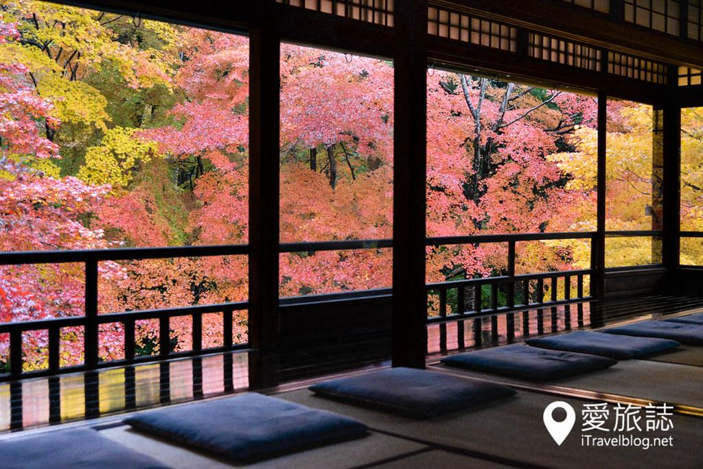 京都赏枫景点 琉璃光院 18