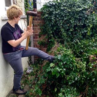 Gardening wth Sledgehammer