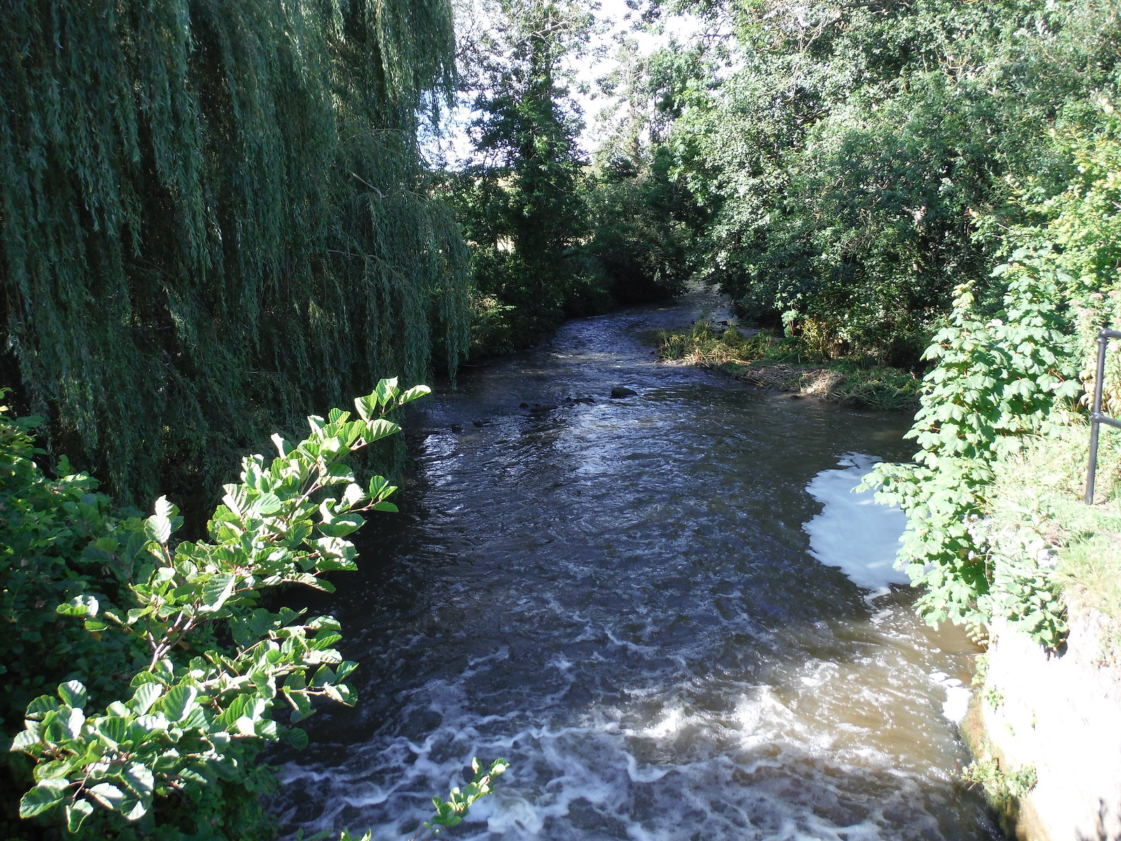 Tisbury Mill Weir Outflow SWC Walk 248 Tisbury Circular via Hindon