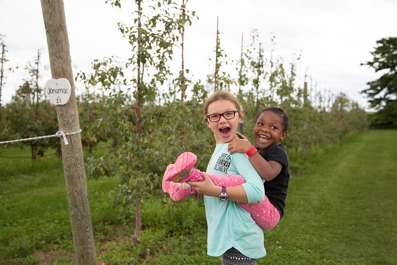 apple orchard (5)