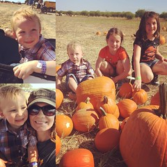 Pumpkin Patch Family Fun. South Texas Maize in Hondo