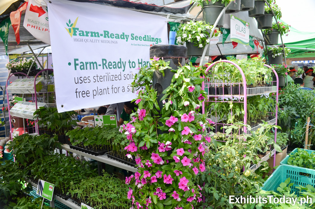 Farm-Ready Seedlings booth