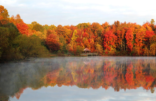 Autumn in the lake (On Explore 10/31/2015)