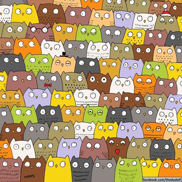 cat-in-owl-crowd