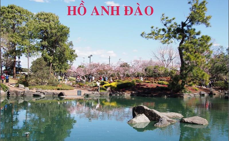 Hồ Anh Đào