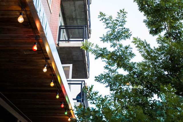 View More: http://wwwallisonwonderlandphotographie.pass.us/katie-visit-kc