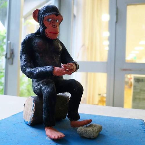 佇む、チンパンジー氏。