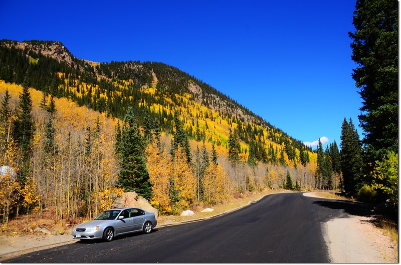Fall colors at Guanella Pass, Colorado (25)