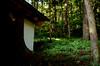 Photo:神明神社 - 岐阜県飛騨市神岡町横山 By mossygajud
