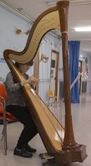 Instrumentos de Muyeres - Arpa