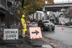 Sidewalk Gnome > 1P365_X70_October_2016_5598