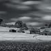 Home On The Range by Nigel Jones LRPS