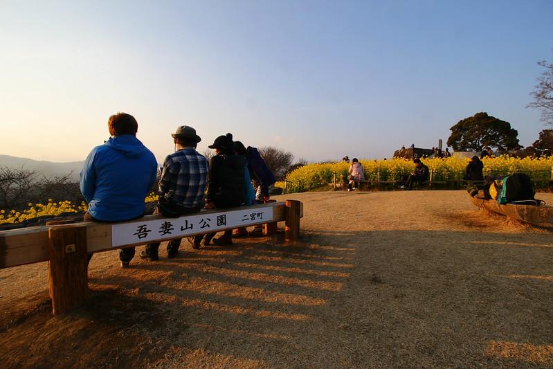20150211-曽我丘陵-0410.jpg