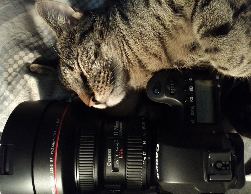 Gabriel and Camera