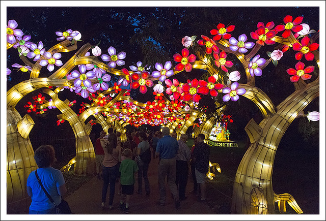 Lantern Festival MoBot 2015-08-28 24
