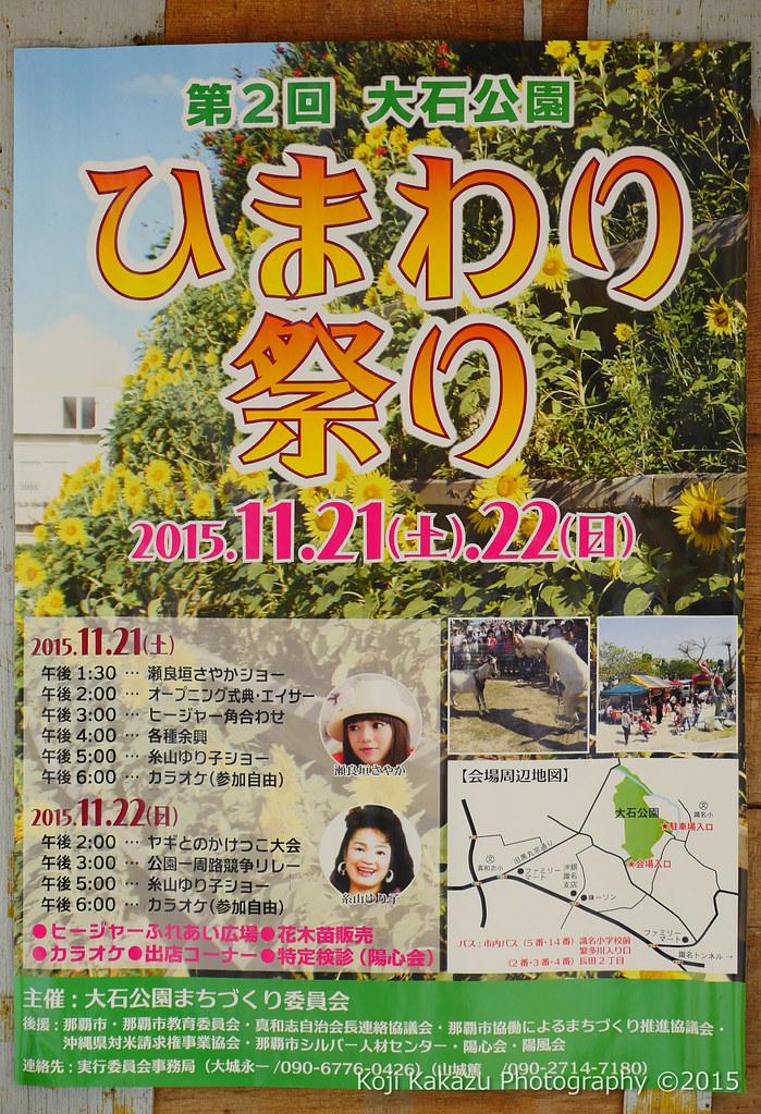第2回大石公園ひまわり祭り2015-13