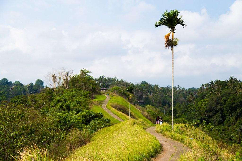 Bali tre uger-4447