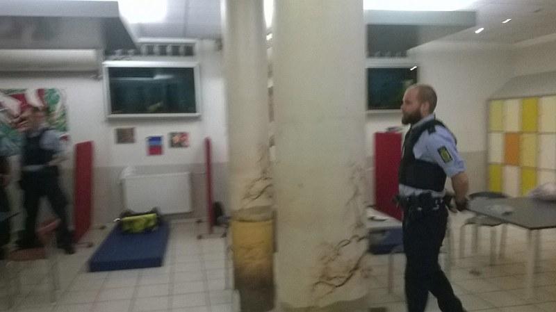 politifolk 2
