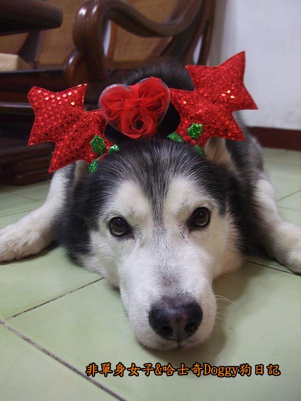 Doggy聖誕節紅色聖誕樹髮箍裝扮15