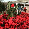 Santa Stitch #epcot #latergram