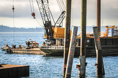 Maury Island Natural Area - Pier removal