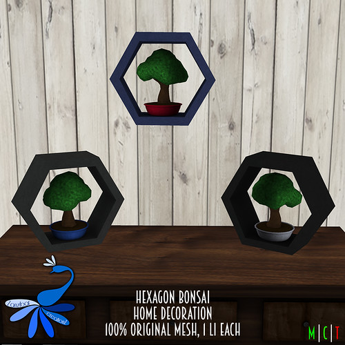 ZcZ Hexagon Bonsai