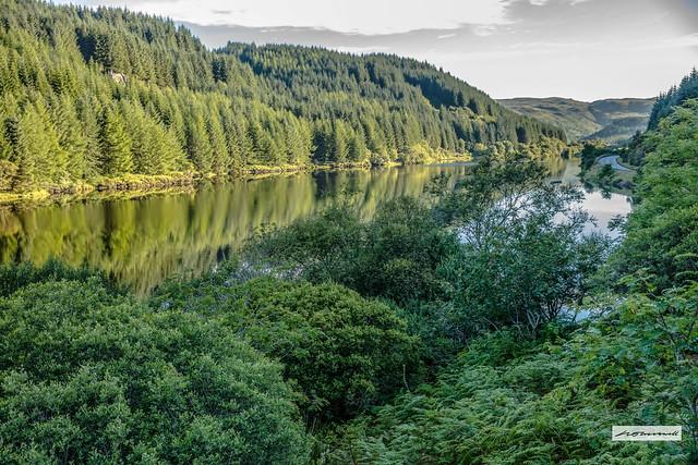 Lush green landscape of Argyll.